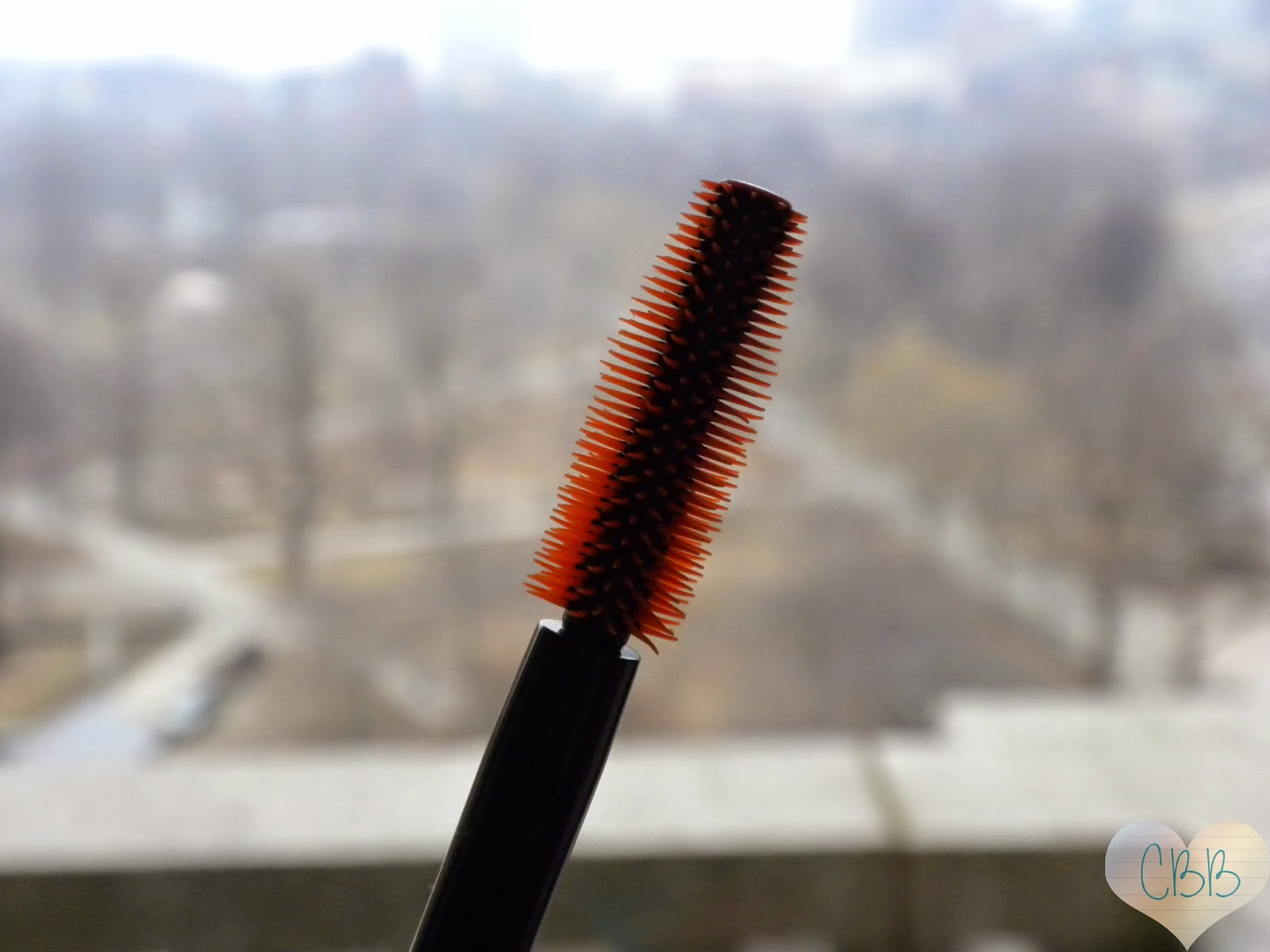 CoverGirl LashBlast Luxe Mascara (August 2014 Empties)