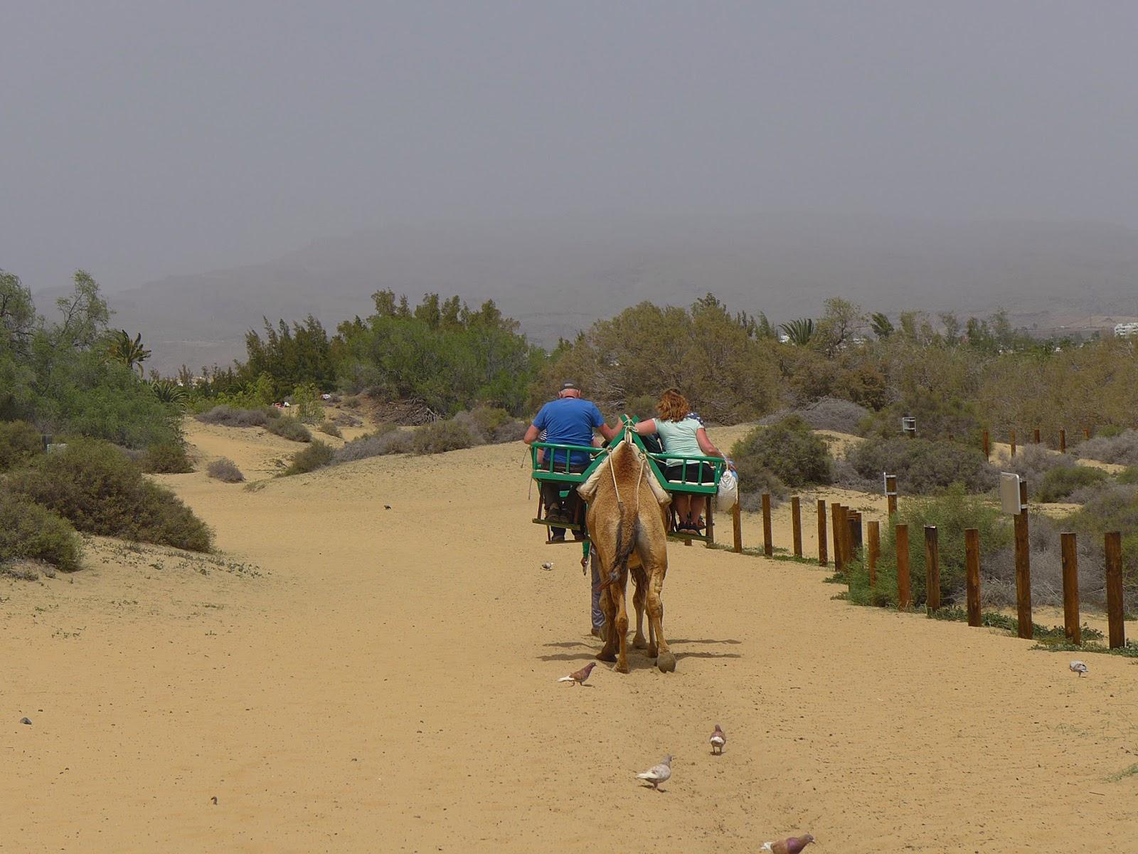 Canaria gran sex urlaub Gran Canaria