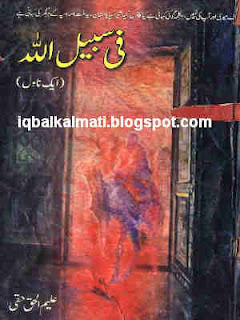 Fee Sabi Lillah Urdu Novel by Haleem ul Haqi