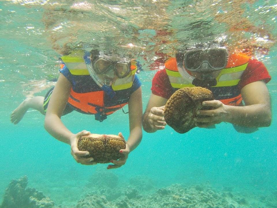 Snorkeling Pulau Tidung