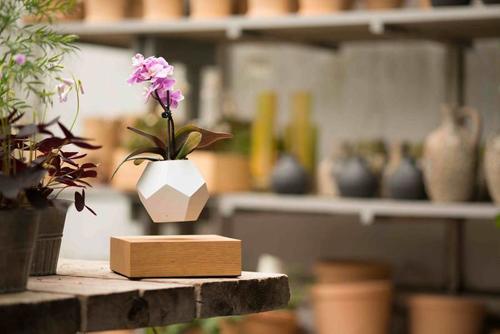 pequeño florero flotante de madera y silicona