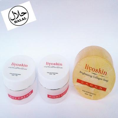 Merk Cream Wajah Yang Aman Dan Bagus