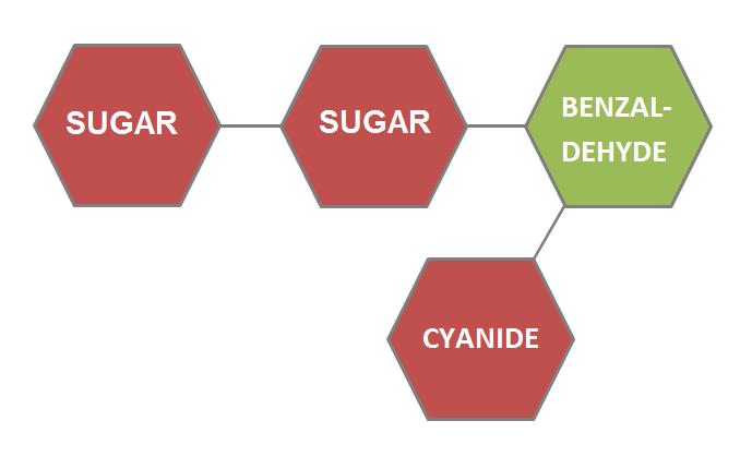 Vitamin B17, amygdalin, laetrile