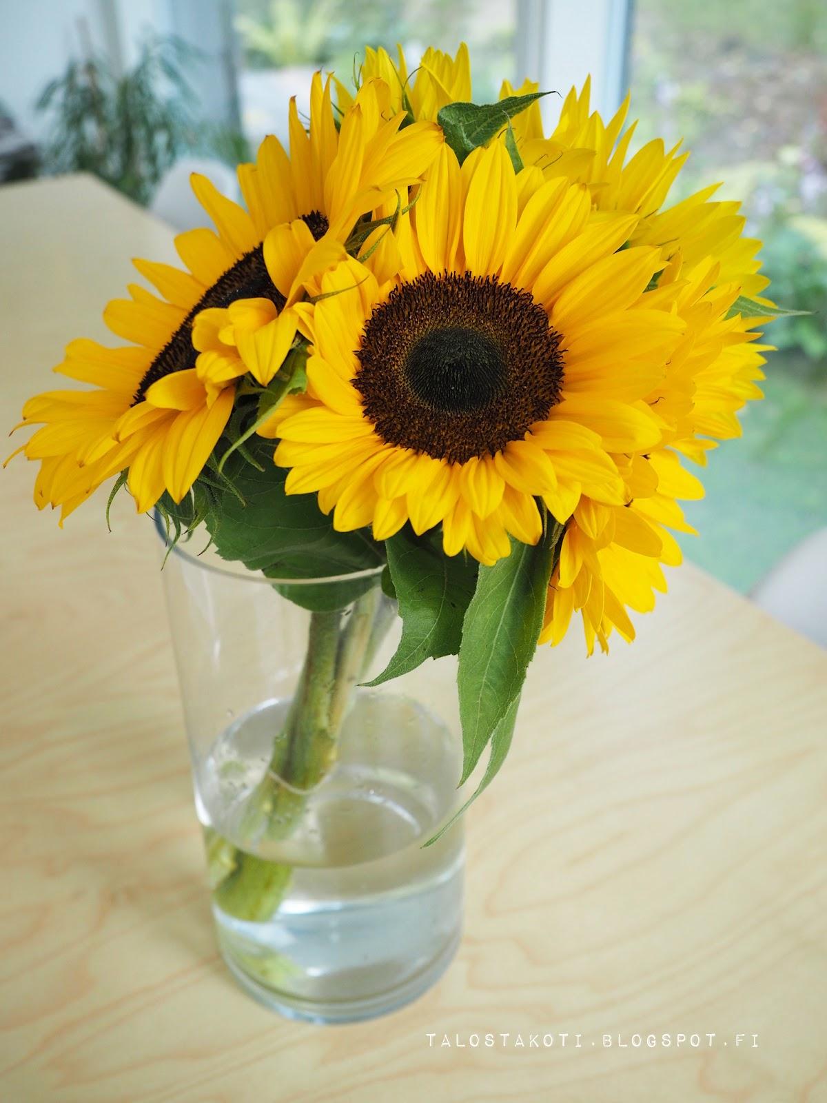 Auringonkukat, keittiön pöytä