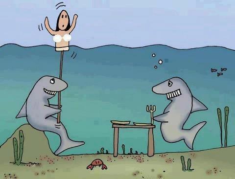 Funny Shark Jaws Cartoon Joke Image
