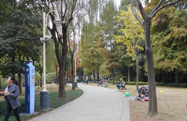 上海にある大きな公園