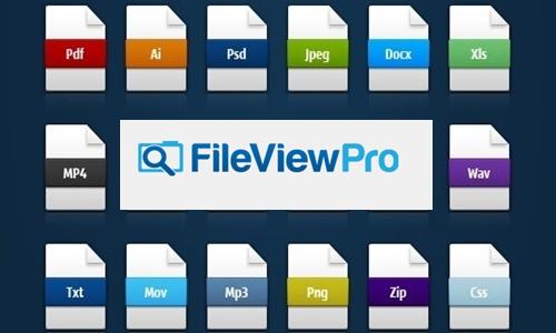 fileviewpro, gratis, serial, ativação