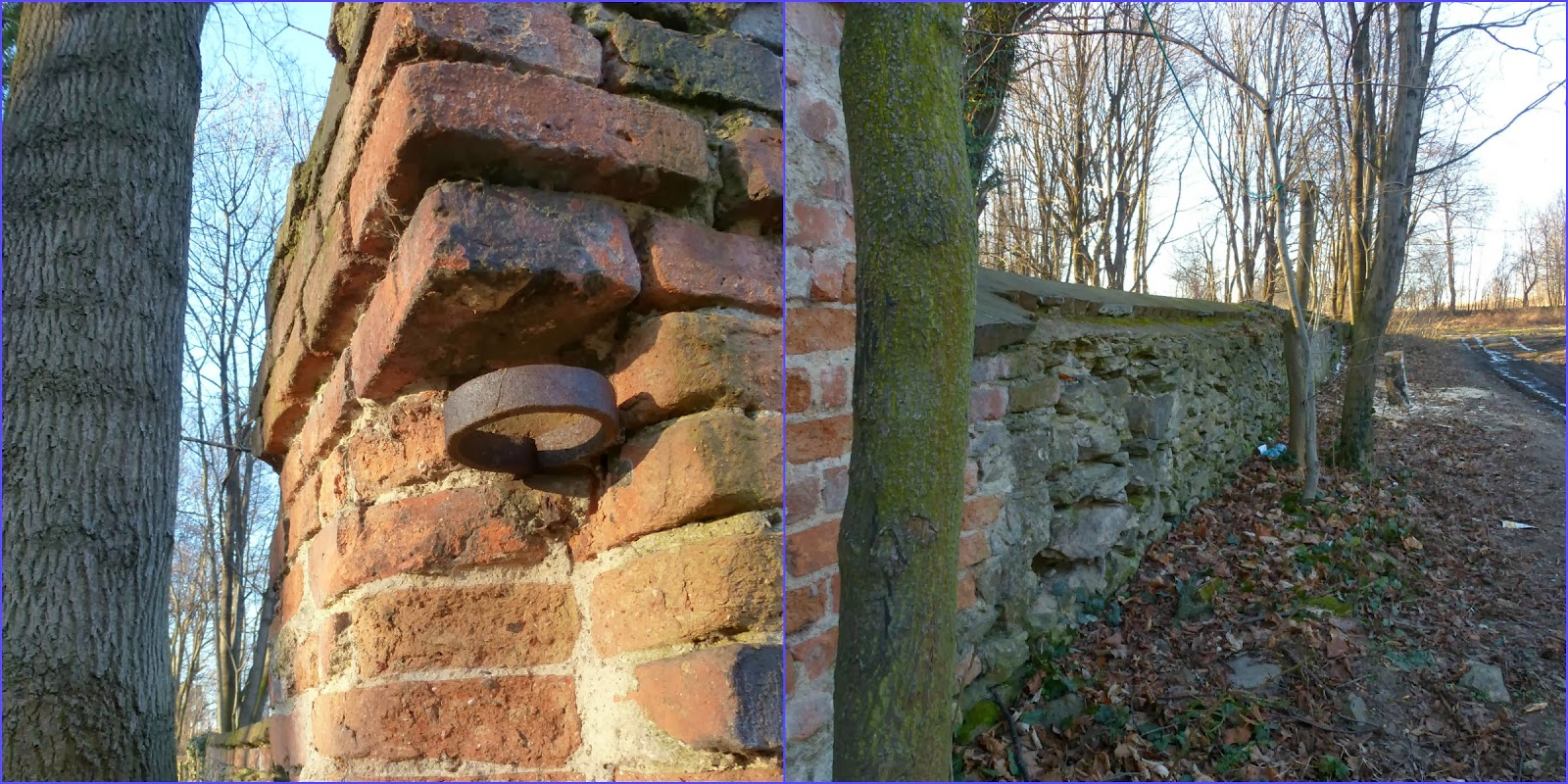 bd49492cd3abc Park był niegdyś otoczony murem (w projekcie- odtworzenie, ale z lukami na  drzewa, które wyrosły w międzyczasie, rozsadziły konstrukcję, ...