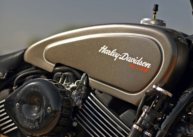 Harley Davidson Street Rod By Noise Cycles Hell Kustom