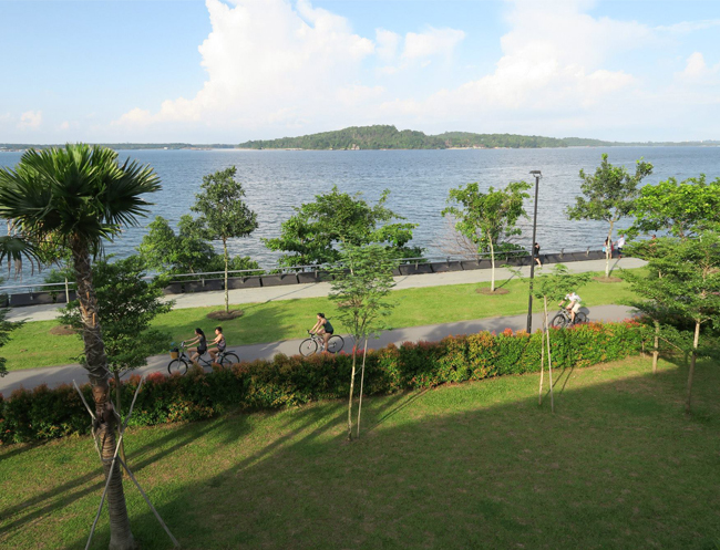 Cycle along Punggol Point Park and enjoy the lovely breeze and sunshine