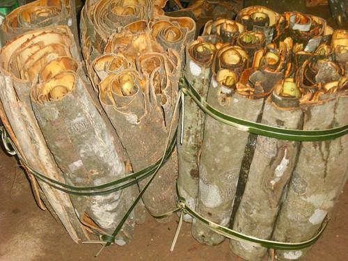 Sản phẩm làm từ quế Trà Bồng