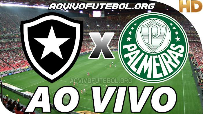 Assistir Botafogo x Palmeiras Ao Vivo