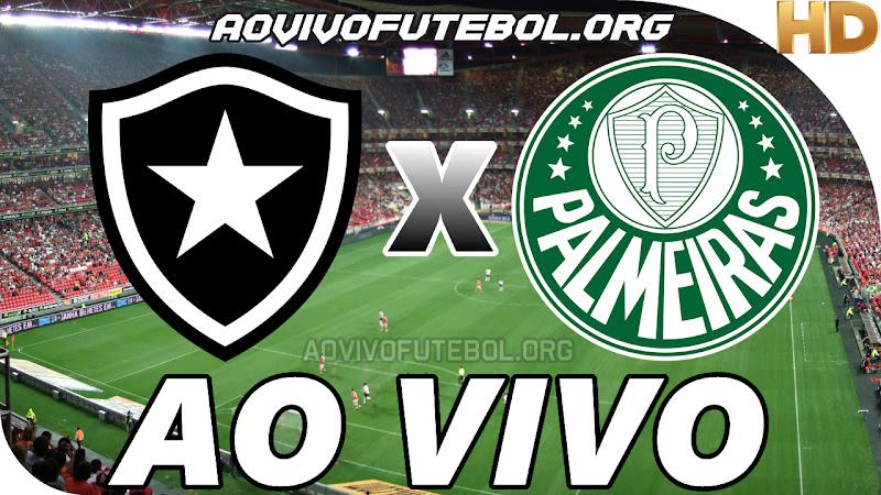 Botafogo x Palmeiras Ao Vivo HD Premiere