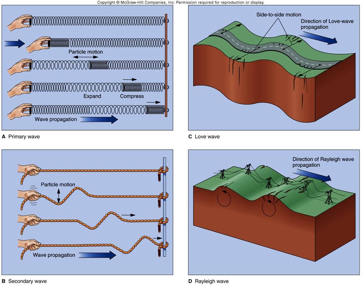Seismic Waves Video