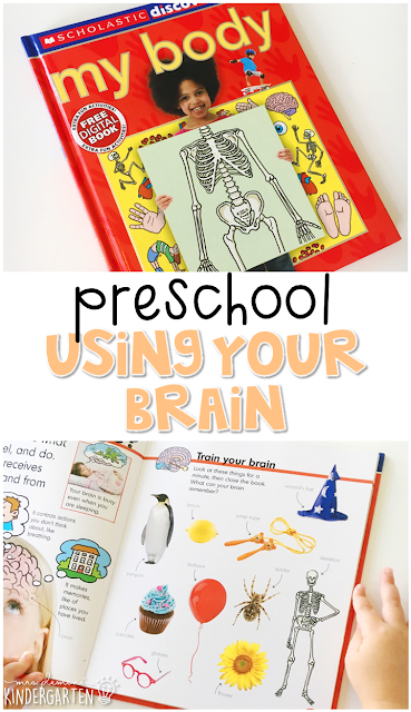 Learn about the human body and your brain with this awesome nonfiction book for young readers. Great for tot school, preschool, or even kindergarten!