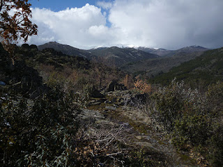 Pico del Lobo (2.274 m)