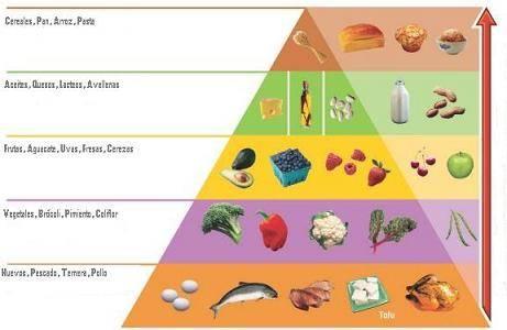 dieta vegetariana equilibrada para bajar de peso