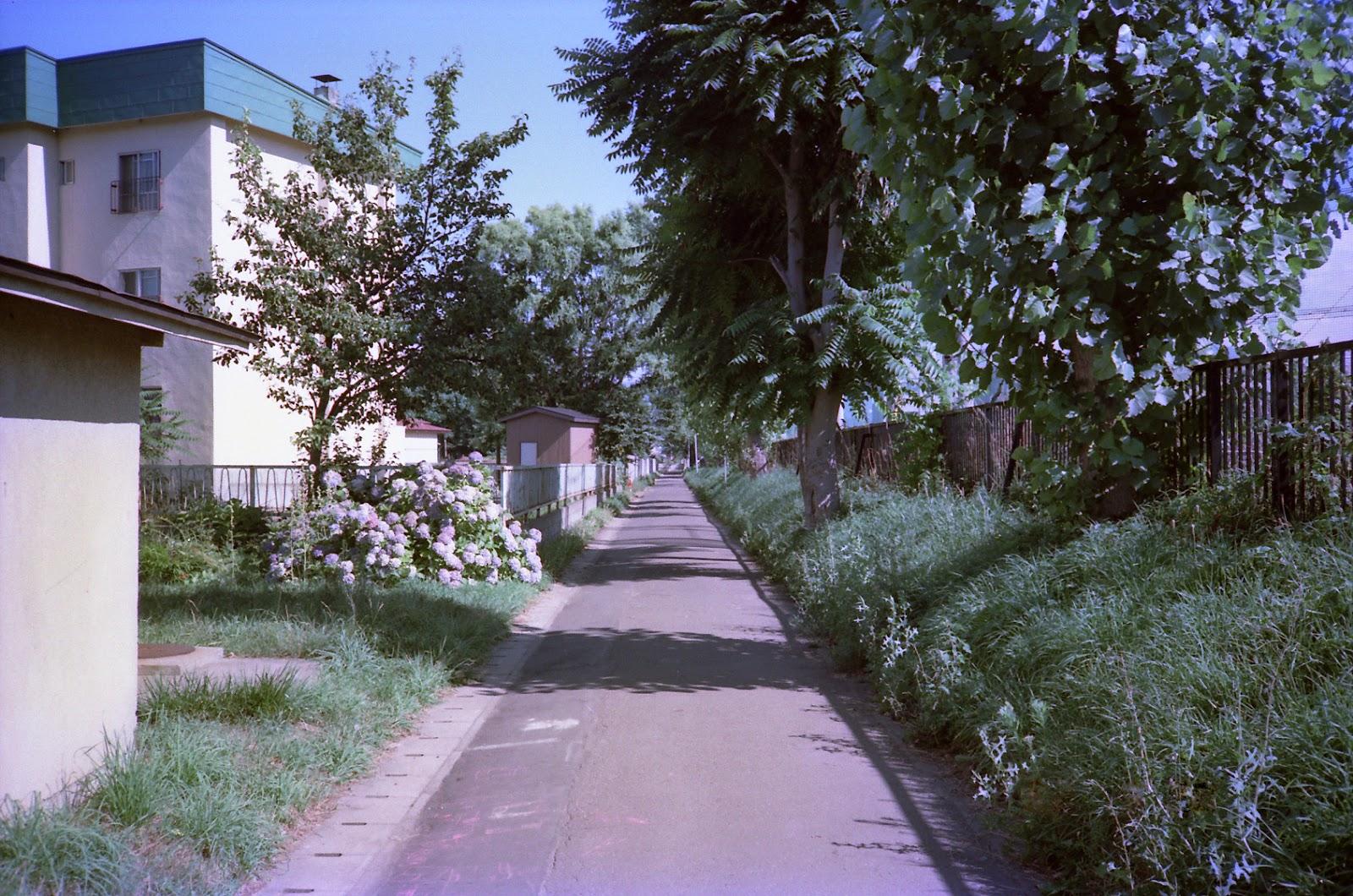 サイクリングロード,住宅地,青森市〈著作権フリー無料画像〉Free Stock Photos