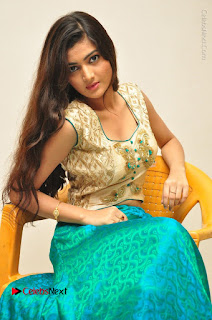 Telugu Actress Akshitha Stills at Prementha Panichese Narayana Movie Opening  0053.JPG