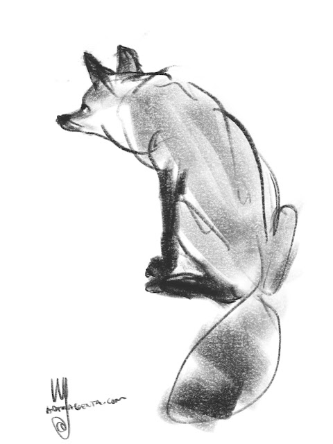 Fox sketch by Artmagenta