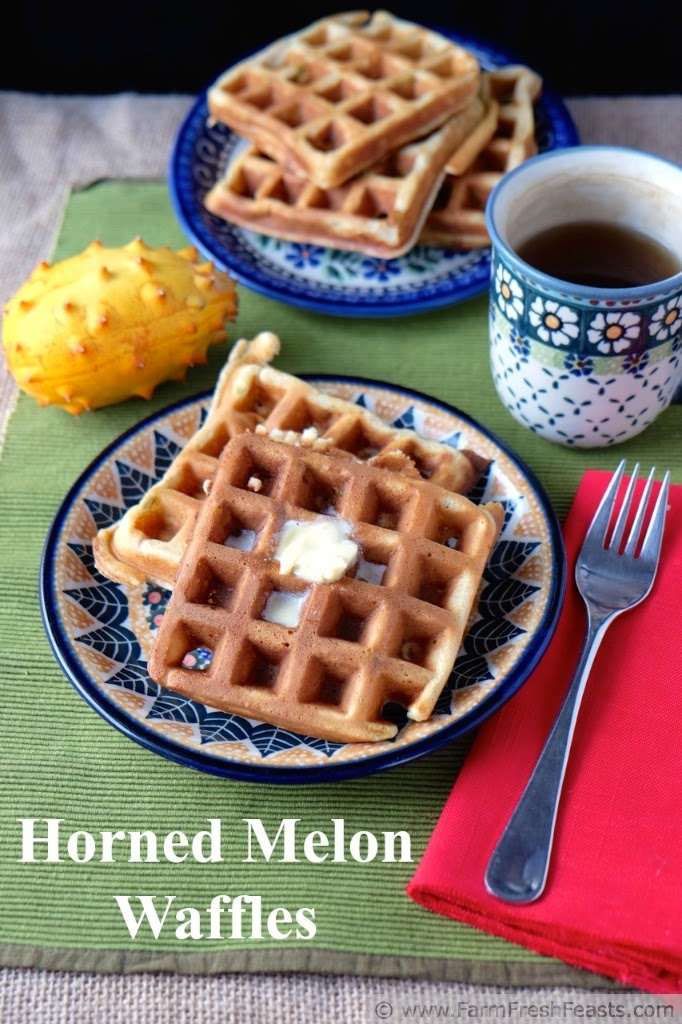 http://www.farmfreshfeasts.com/2015/02/horned-melon-waffles.html