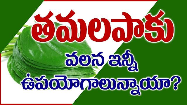 తమలపాకుల వలన కలిగే ఉపయోగాలు | Uses of betel leaf | GRANTHANIDHI | MOHANPUBLICATIONS | bhaktipustakalu
