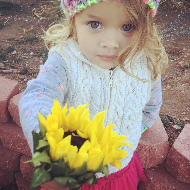 Cayenne holding a sunflower