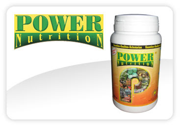 power nutrition nasa 087747838108