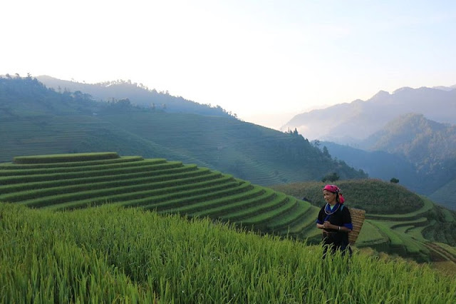 What makes you spend 5 days for a trip to explore Sapa & Mu Cang Chai?