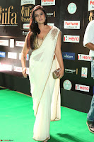 Varalakshmi in Cream Saree Sleeveless Backless Deep Neck Choli at IIFA Utsavam Awards March 2017 060.JPG