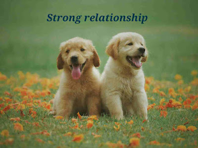 Strong-relationship