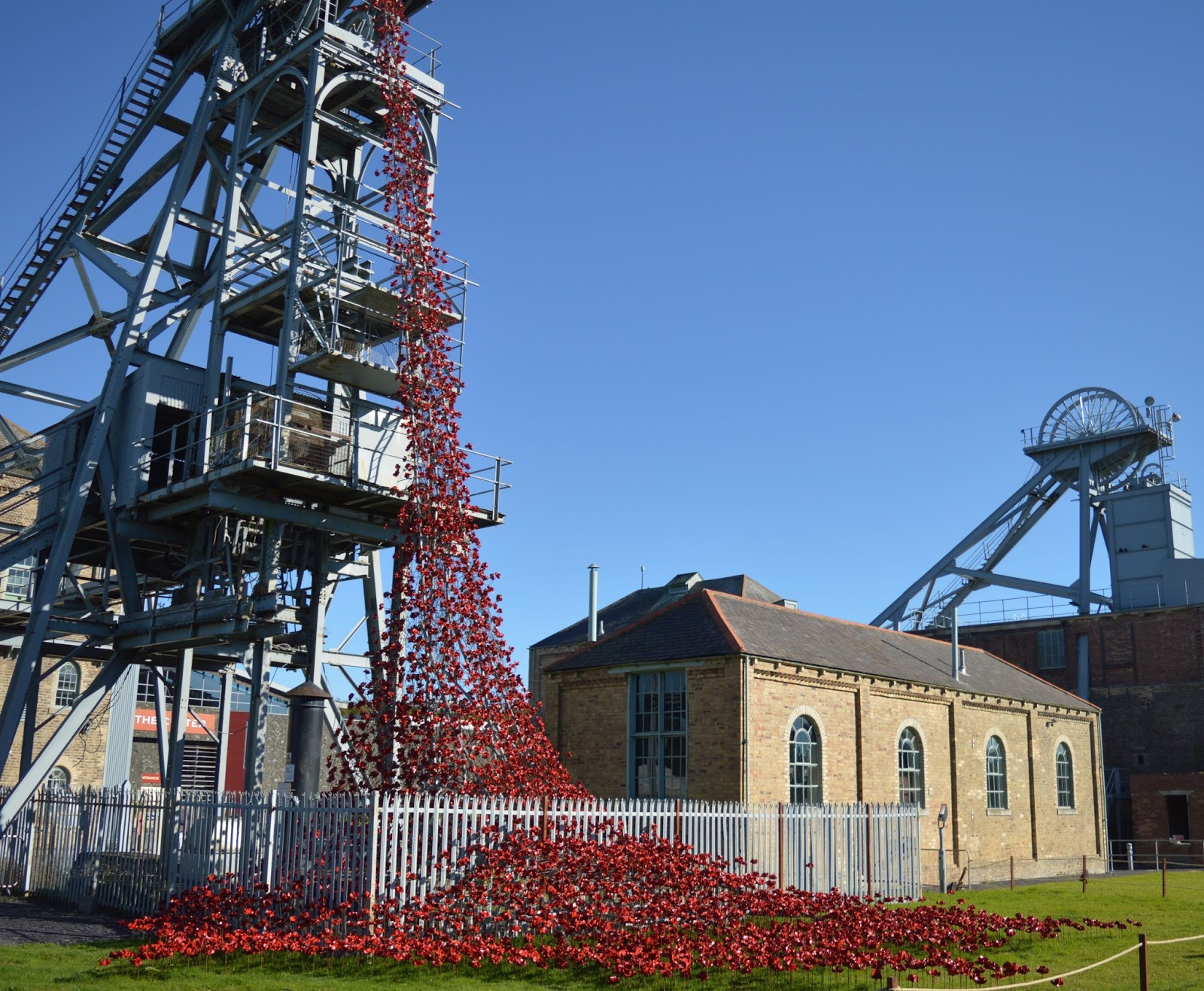 10 Reasons to Visit Woodhorn Museum (A Review) - poppies exhibition