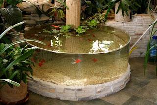 Terasz télikertépítés víz, akvárium