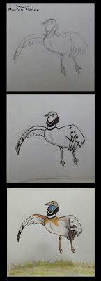 Ilustración sison