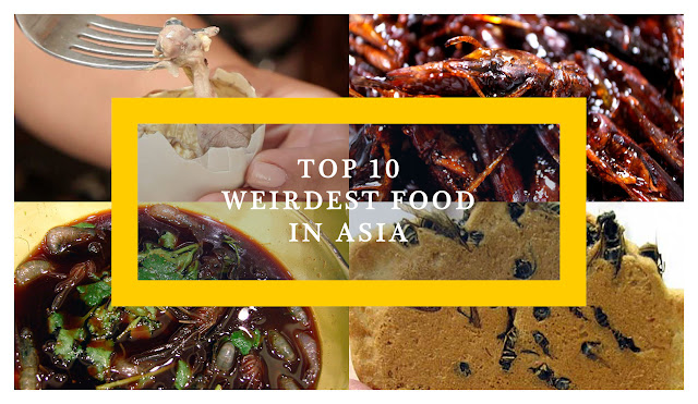 Top 10 Weirdest Food in Asia | Ramble and Wander