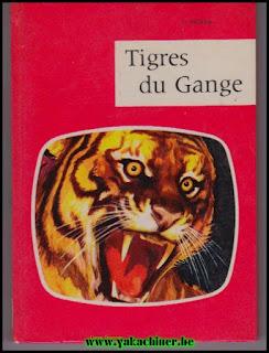 Tigres du Gange