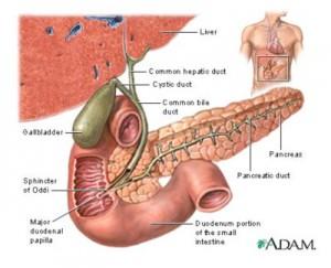 posicion mahometana pancreatitis y diabetes