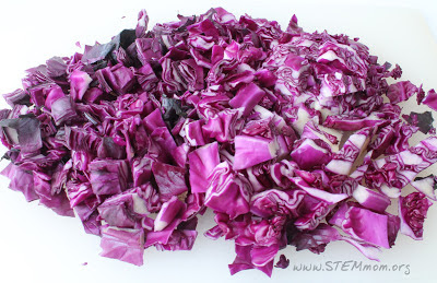 Cut cabbage into small pieces: pH indicator lab from STEM Mom.or