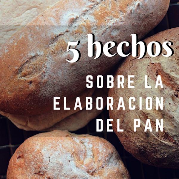 5 hechos sobre la elaboración del pan