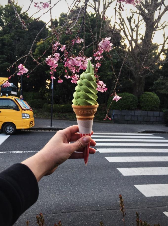 matcha lody