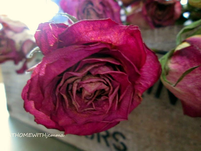 DIY-Drying Roses
