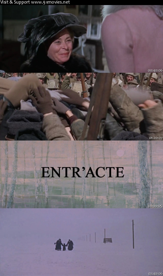 Doctor Zhivago 1965 Dual Audio Hindi 480p BluRay