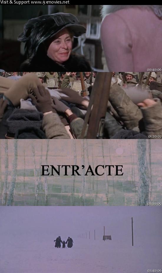 Doctor Zhivago 1965 Dual Audio Hindi 720p BluRay