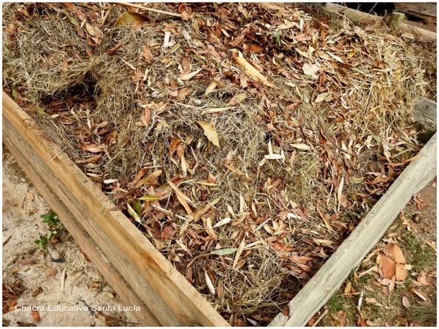 Lumbricario en la compostera - Chacra Educativa Santa Lucía