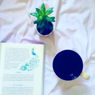 Rezension Leselust Bücherblog Bestseller Buchtipp Fantasy Zamonienroman