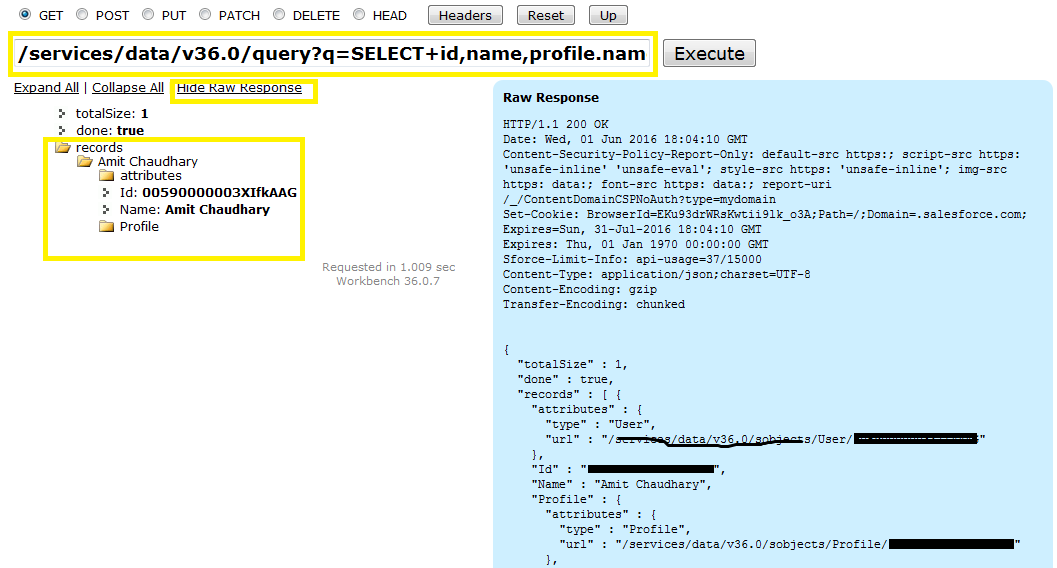 Amit Blog 4Salesforce: REST Explorer | Using Workbench | Execute ...
