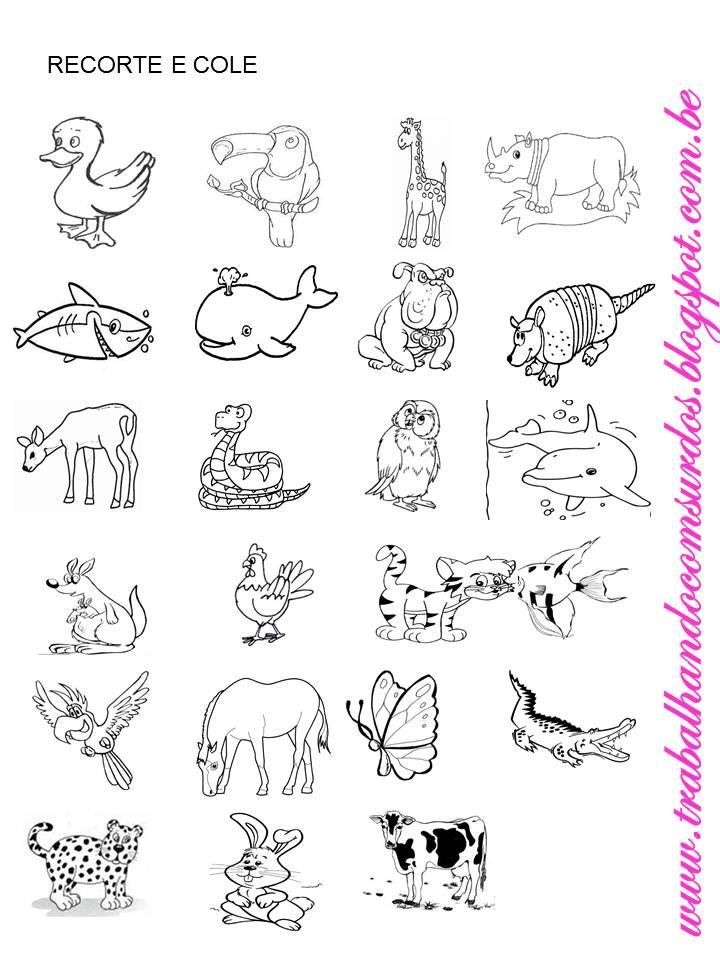 Trabalhando com Surdos: Atividades sobre os animais em LIBRAS