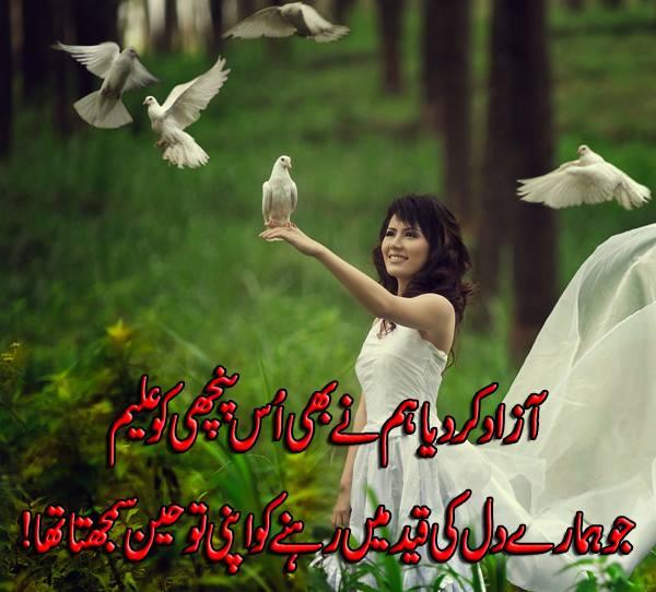 Azaad Kar Diya Hum Ne Bhi Us Panchi Ko Aleem Jo Humare Dil Ki Qaid Mein Rehne Ko Apni Touheen Samajhta Tha