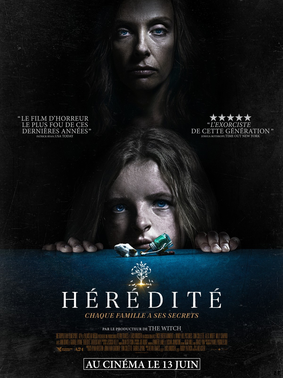 Hérédité [BDRip] [Streaming] [Telecharger]