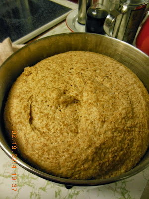 Wheat and Honey Dough, ready to divide, add raisins to half, and shape into loaves.